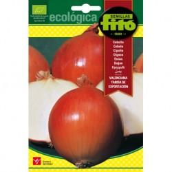 Cebolla Valenciana Tardía de Exportación Ecológica
