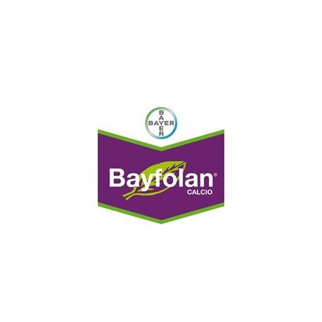 Bayfolan Calcio