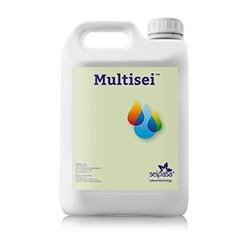 Multisei